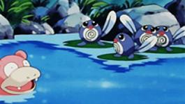 slowpoke-poliwag